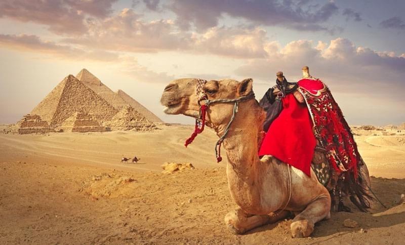 cairo luxor aswan 7 nights 8 days