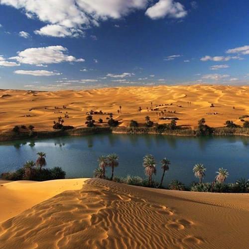 oases siwa